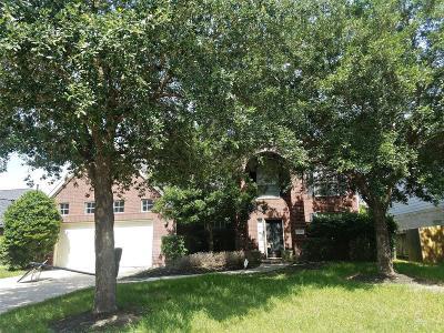 Harris County Single Family Home For Sale: 10722 Fallsbridge Drive