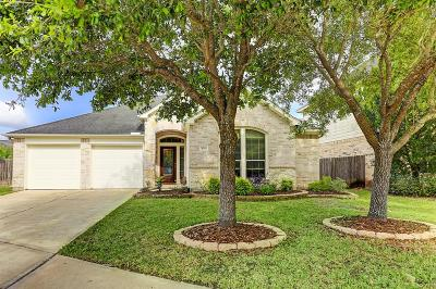 Sugar Land Single Family Home For Sale: 4134 Regal Stone Lane