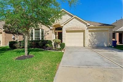 Rosenberg Single Family Home For Sale: 2615 Diamond River Drive