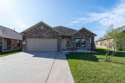 Tomball Single Family Home For Sale: 10223 S Pine Ivy Lane