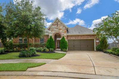 Katy Single Family Home For Sale: 26819 Wescott Pines Drive