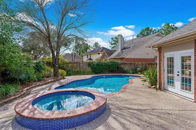 Houston Single Family Home For Sale: 2202 Village Dale Drive