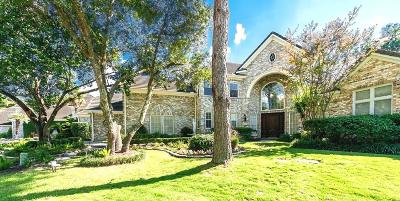 Houston Single Family Home For Sale: 2715 S Southern Oaks Drive