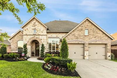 Friendswood Single Family Home For Sale: 902 Cozy Hollow Court