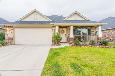 Spring Single Family Home For Sale: 31743 Summit Springs Lane