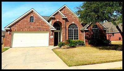 Houston Single Family Home For Sale: 9326 Stone Porch Lane
