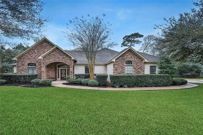 Tomball Single Family Home For Sale: 19107 Timberlake Woods Lane