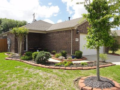 League City Single Family Home For Sale: 1530 Brunello Street