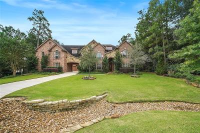 Conroe Single Family Home For Sale: 10104 Aspen Star Court