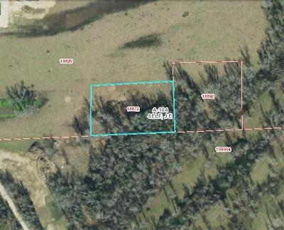 Liberty Residential Lots & Land For Sale: County Road 133 West Of