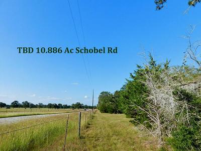 Columbus TX Farm & Ranch For Sale: $217,720