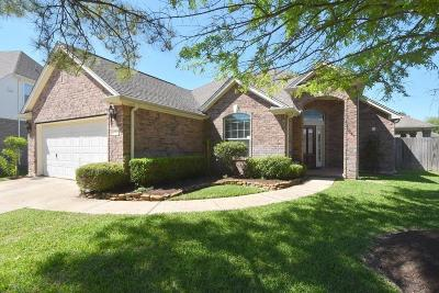 Katy Single Family Home For Sale: 4907 Surrey Park Circle