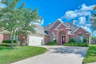 Katy Single Family Home For Sale: 20506 Nellie Gail Trail Lane