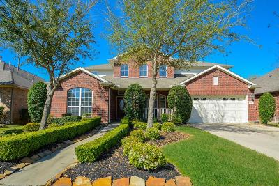 Sugar Land Single Family Home For Sale: 1206 Ancrum Hill Lane