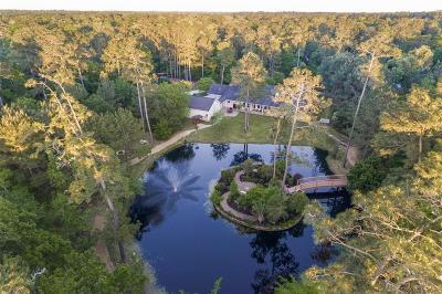 Magnolia Single Family Home For Sale: 15904 Barbara Lane