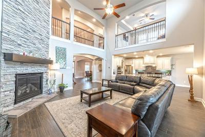 Richmond Single Family Home For Sale: 17326 Daylamani Drive