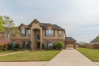 Friendswood Single Family Home For Sale: 1607 Cascade Falls Drive