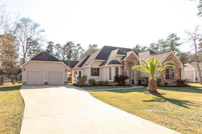 Magnolia Single Family Home For Sale: 22307 Rainfern Drive