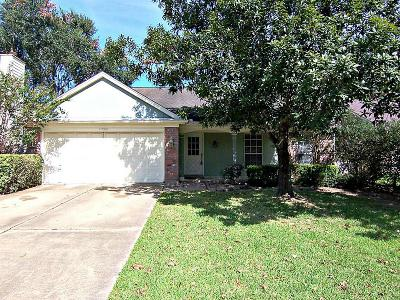 Katy Single Family Home For Sale: 21206 Park Willow Drive