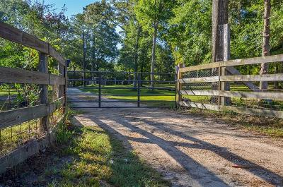 Conroe Single Family Home For Sale: 11120 Fm 1484 Road