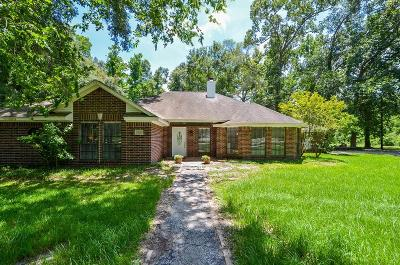 Dayton Single Family Home For Sale: 754 County Road 6763