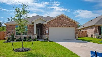 Spring Single Family Home For Sale: 4743 Creekside Haven