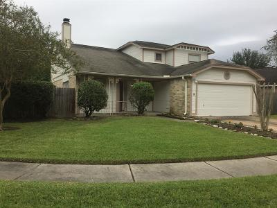Houston Single Family Home For Sale: 9610 Blackamore Circle
