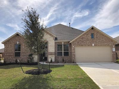 Katy Single Family Home For Sale: 23607 Messina Harbor Drive