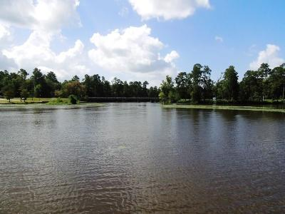 Houston Residential Lots & Land For Sale: Shady Lane
