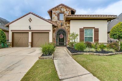 Riverstone Single Family Home For Sale: 4127 Sundance Hill Lane
