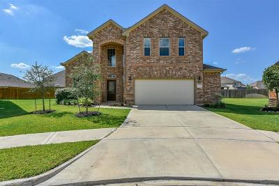 Tomball Single Family Home For Sale: 22318 Oxton Court