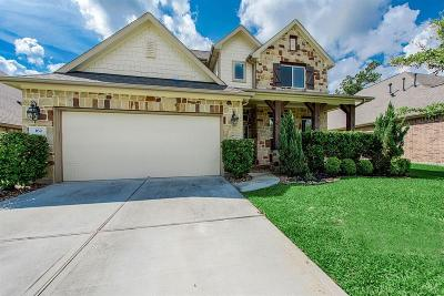 The Woodlands Single Family Home For Sale: 162 Hearthshire Circle