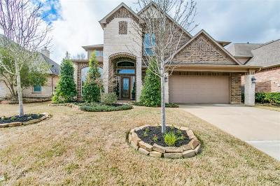 Tomball Single Family Home For Sale: 21223 Knight Quest Drive