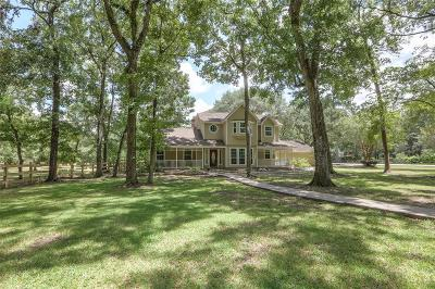 Tomball Single Family Home For Sale: 23102 Rosewood Trail