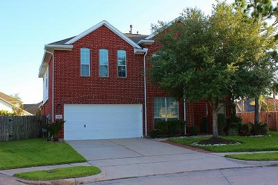Katy Single Family Home For Sale: 2311 Red Bluff Court