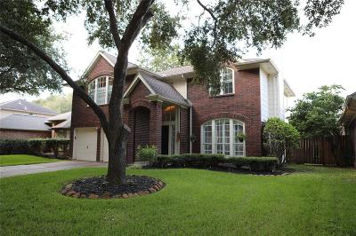Sugar Land Single Family Home For Sale: 4131 N New Meadows Drive