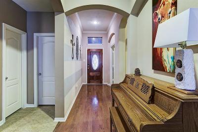 Fulshear Single Family Home For Sale: 28211 Emerald Creek Lane