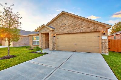 Katy Single Family Home For Sale: 1081 Mule Ridge Drive