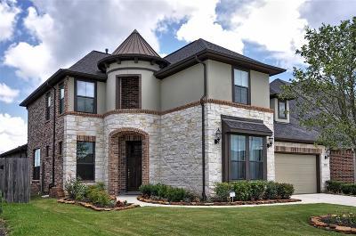 Sugar Land Single Family Home For Sale: 3926 May Ridge Lane