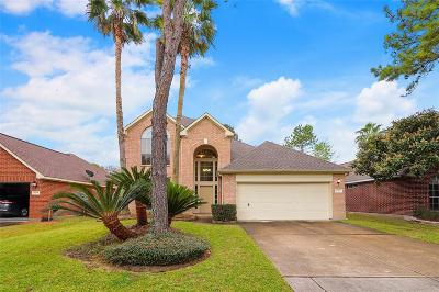 Houston Single Family Home For Sale: 10223 Pony Express Road