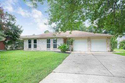 Houston Single Family Home For Sale: 17223 Camberwell Green Lane