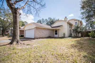 Houston Single Family Home For Sale: 10419 Appleridge Drive