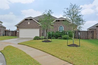 Hockley Single Family Home For Sale: 16334 Tyler Reach Drive