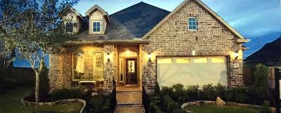Single Family Home For Sale: 3577 Falcon Way