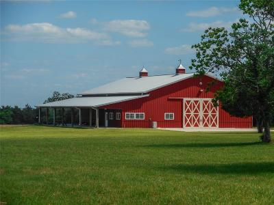Cat Spring Farm & Ranch For Sale: 10430 Pless Road