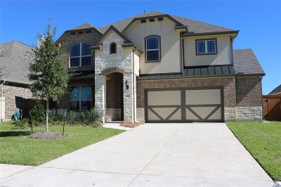 Texas City Single Family Home For Sale: 2818 Bernadino Drive