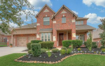 Single Family Home For Sale: 317 Arbor Trail Lane