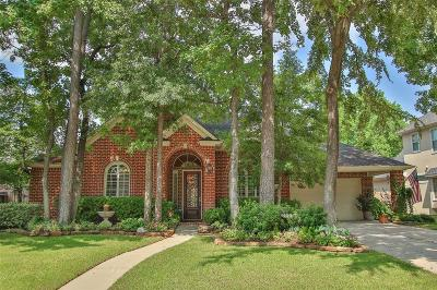 Spring Single Family Home For Sale: 16207 Crystal Creek Court
