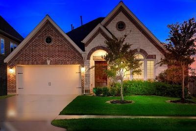 Single Family Home For Sale: 163 Deerfield Meadow Drive