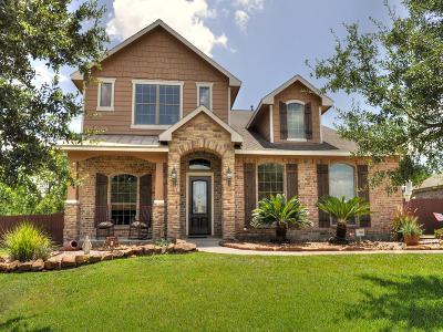 Montgomery Single Family Home For Sale: 283 Berkley Drive